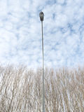 Lamppost rising above trees. Possible concepts: Man vs nature, enlightenment, power, civilization stock image