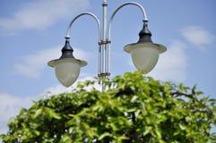 Lamppost w ogródzie Obraz Stock