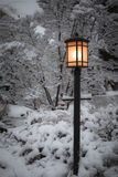 Lamppost. A winter scene including snow covered trees and a lamppost Royalty Free Stock Images
