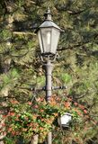 Lamppost Z kwiatami Zdjęcia Stock