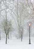 Lampposts en la nieve Foto de archivo libre de regalías