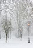 Lampposts in the snow Royalty Free Stock Photo