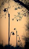 Lampposts Royalty Free Stock Photo