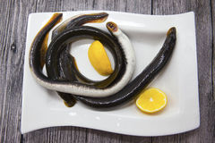 Lampreia fresca dos peixes vivos na placa da porcelana com limão imagens de stock
