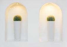 Lamps and cacti in alcove Stock Photo