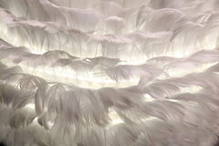 Lamps made of feathers Stock Photo