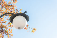 Lampstolpe, ljusa Pole Royaltyfria Foton