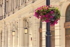 Lampstolpe med rosa blommor Arkivbild