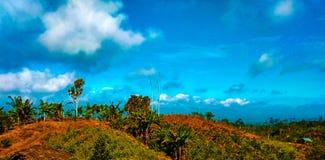 Lampung immagini stock