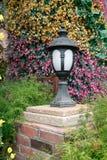 lampväg Arkivfoto