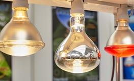 Lampy dla drobiu Obraz Stock