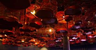 Lampy umieszczać w birdcage zdjęcia royalty free