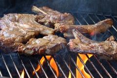Lamskoteletbarbecue op brand Royalty-vrije Stock Fotografie
