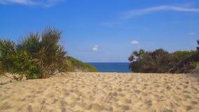 Lamu island in Kenya. Beach at Lamu island in Kenya stock photography