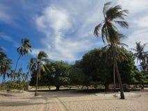 Lamu island in Kenya Royalty Free Stock Photo