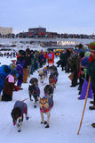 A lança Mackey começa a procura de Yukon Imagem de Stock Royalty Free