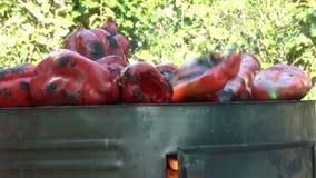 Lançando Paprika On Barbecue Close Up vermelha filme