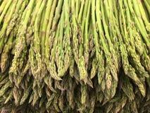 Lanças do aspargo Imagens de Stock Royalty Free