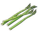 Lanças dos espargos Imagem de Stock