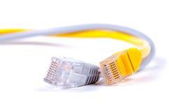 LAN网络缆绳 免版税库存照片