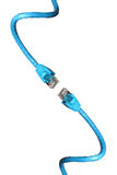 lan кабеля Стоковая Фотография RF