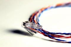 Lan цвета провода штепсельной вилки Стоковые Изображения