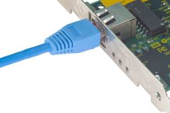 Lan adapter with patchcord. Network patchcord plugged in lan-adapter Royalty Free Stock Image