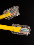 Lan cable close up Royalty Free Stock Photo