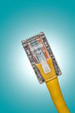 Lan cable close up Royalty Free Stock Images