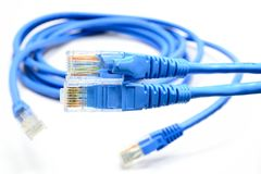 LAN Cable connect to Network Device. The LAN Cable connect to Network Device Royalty Free Stock Photography