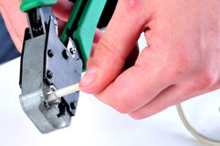 LAN cable crimping process. Stages Of The Process Royalty Free Stock Image