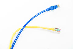 LAN cable line Royalty Free Stock Image