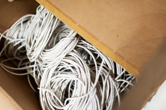 Lan cable in network room Royalty Free Stock Images