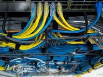 LAN cable Stock Image