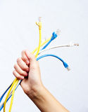 LAN cables. Bunch of category 6 network patch cords Stock Photos