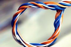 LAN de couleur de fil de prise Photographie stock libre de droits