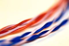 LAN de fil de prise de couleur Photographie stock libre de droits