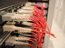 LAN Hardware Stock Photo