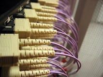 LAN Hardware Royalty Free Stock Photo