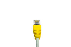LAN isolated on white background. Lan contact router network isolated net cord Stock Images