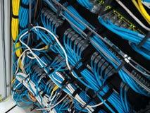 Lan kabel Obraz Royalty Free