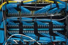 LAN-kabel arkivbild