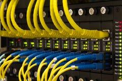 LAN-kabel Royaltyfria Foton