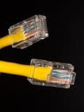 Lan kabel dichte omhooggaand royalty-vrije stock foto