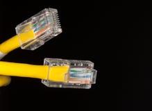 Lan kabel dichte omhooggaand Stock Afbeelding