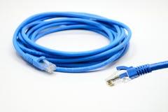 LAN-kabel förbinder till nätverksapparaten arkivbild