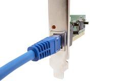 Lan-Kabel u. -Netzwerkkarte Lizenzfreies Stockbild