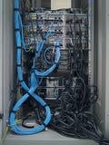 LAN-kabeln royaltyfri bild