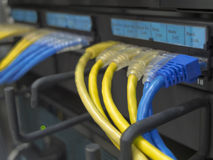 LAN-kabeln arkivfoton