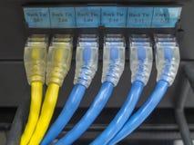 LAN-kabeln royaltyfria foton